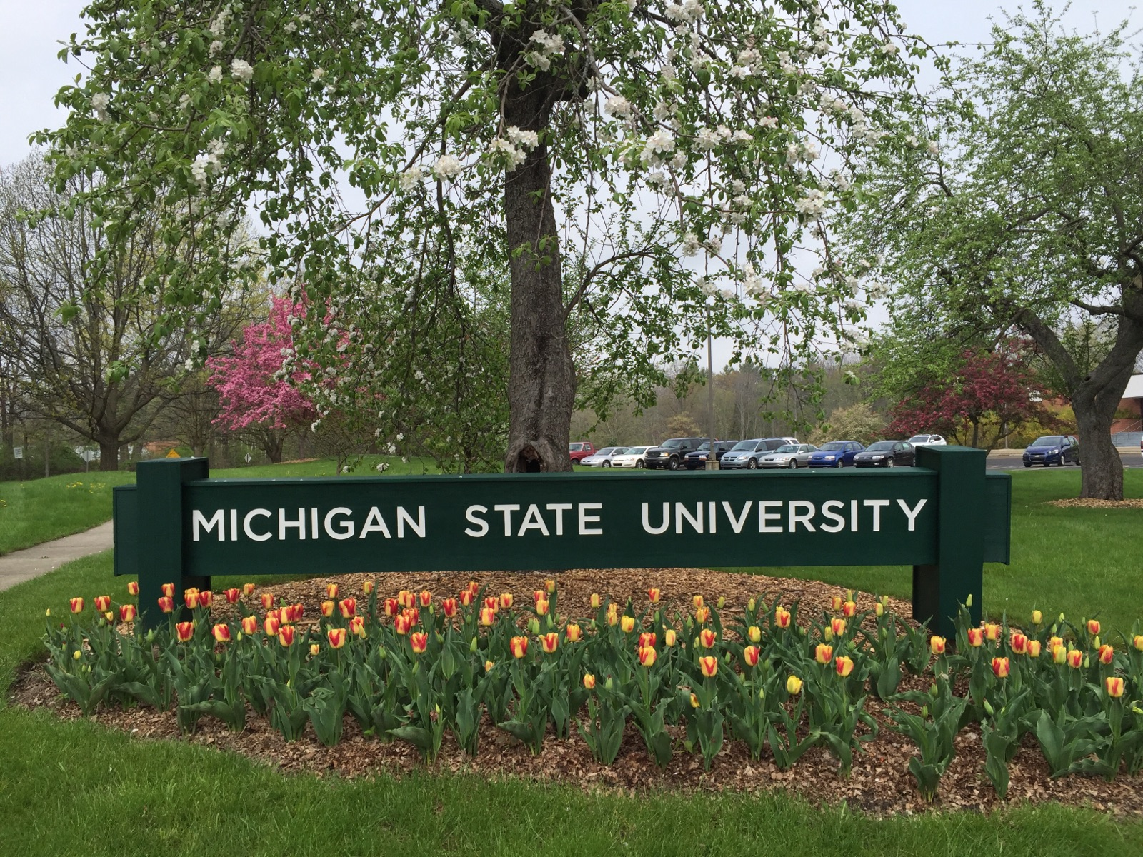 MSU monument sign in front of St. Andrews building