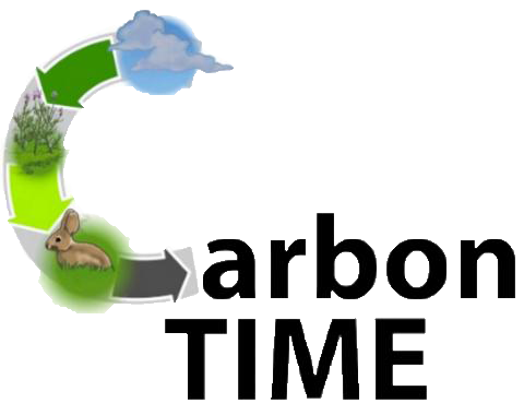 Carbon Time Logo